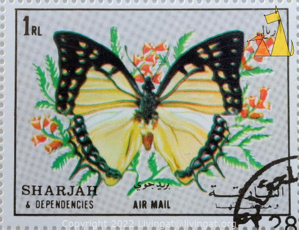 Great Nawab, Sharjah and Dependencies, Sharjah, stamp, air mail, insect, butterfly, Polyura eudamippus, 1 Rl