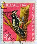 Great Spotted Woodpecker, Helvetia, Switzerland, stamp, Oro Juventus 1970, 1970, 30+10, Richard Gerbig, Courvosier S, Dendrocopos major