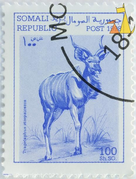Greater Kudu, Republic Somali, Somalia, stamp, mammal, 100 Sh.SO, Post, 1998, Tragelaphus strepsiceros