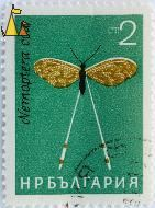 Grecian Streamertail, Bulgaria, stamp, insect, 2 Ct, Nemoptera coa