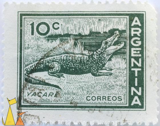 Green Caiman, Argentina, stamp, reptile, Correos, 10 c, Yacare, Caiman spp