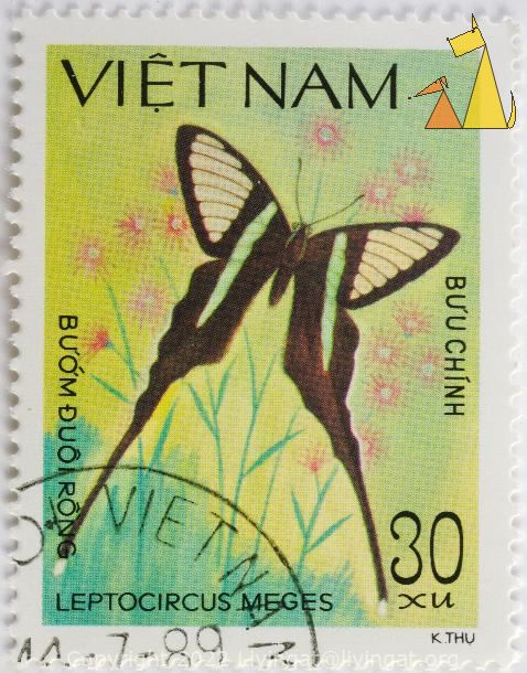 Green Dragontail, Viet Nam, Vietnam, stamp, insect, butterfly, 30 xum K Thu, Buu Chinh, Buom Duoirong, 1989, Leptocircus meges, Lamproptera meges