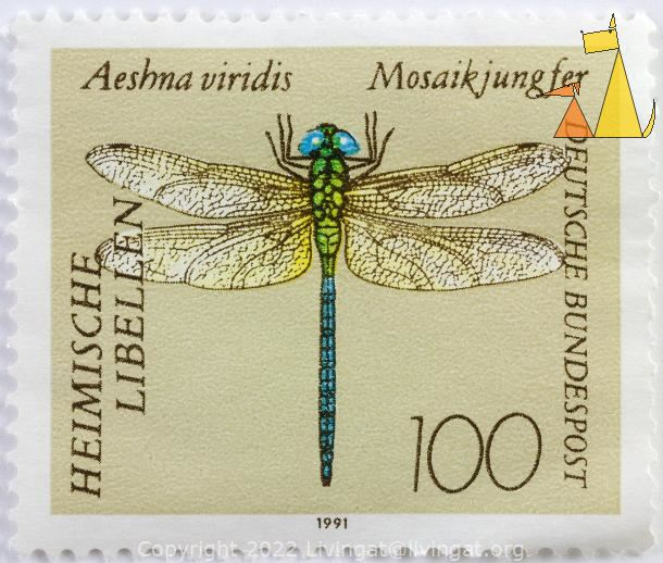 Green Hawker, Deutsche, Germany, stamp, insect, dragonfly, 1991, 100, Heimische libellen, Mosaikjungfer, Bundespost, Aeshna viridis