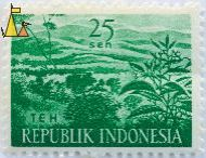 Green Tea, Republik Indonesia, Indonesia, stamp, plant, crop, farming, teh, 25 Sen, Camellia sinensis