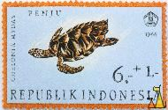 Green sea turtle, Republik Indonesia, Indonesia, stamp, reptile, turtle, 6+1, Penju, 1966, Chelonia mydas, Chelonia mydas