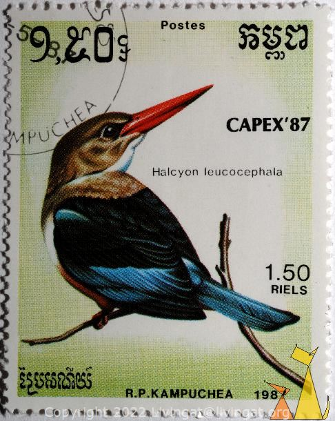 Grey-headed Kingfisher, R.P. Kampuchea, Cambodia, stamp, bird, kingfisher, Postes, CAPEX'87, 1.50 Riels, 1987, Halcyon leucocephala
