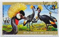 Grey Crowned Crane, Republicue du Senegal, Senegal, stamp, bird, Poste aerienne, J Van Noten, 1974, 3 F, Grues couronnees, Oiseaux du parc au Djoudi, Balearica regulorum
