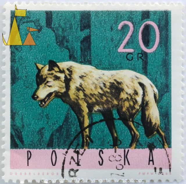 Grey Wolf on Green, Polska, Poland, stamp, mammal, Canis lupus, 20 Grm Desselberger, PWPW, 1968