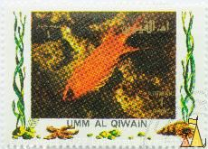 Hawaiian squirrelfish, Umm al Qiwain, Umm al Quwain, UAE, stamp, fish, Air Mail, 1 Riyal, Sargocentron xantherythrum