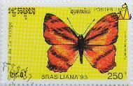 Himalayan Jester, Etat du Cambodge, Cambodia, stamp, insect, butterfly, Brasiliana 93, Postes, 1993, 250 R, Symbrenthia hypselis