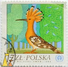 Hoope in the Ground, Polska, Poland, stamp, bird, Upupa epops, 17 Zl, S Malecki, PWPW, 1982, UNEP