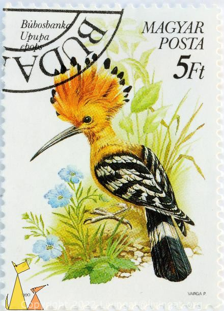 Hoopoe on the ground, Magyar, Hungary, stamp, bird, 1990, Varga P, Posta, 5 Ft, Upupa epops, Bubosbanka