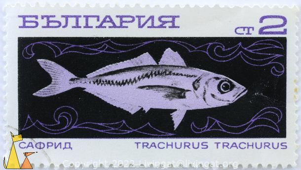 Horse Mackerel, Bulgaria, stamp, fish, 2 Ct, Trachurus trachurus