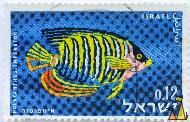 Imperial Angelfish, Israel, stamp, fish, 0.12, Imperial Angelfish, Holacanthus imperator, Pomacanthus imperator