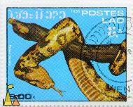 Indian Python i a Tree, Lao, Laos, stamp, reptile, snake, Postes, 1986, 5.00 k, Indian python, Python molurus, tongue