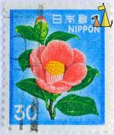 Japanese Camellie, Nippon, Japan, stamp, flower, blue, 30, Camellia japonica