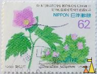 Japanese Wood Poppy, Nippon, Japan, stamp, plant, flower, 62, 1993, Glaucidium palmatum