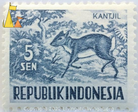 Java Mouse-deer, Republik Indonesia, Indonesia, stamp, mammal, kantjil, 5 Sen, Tragulus javanicus