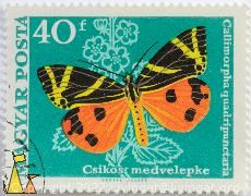 Jersey Tiger, Hungary, stamp, insect, butterfly, Vertel Jozsef, Magyar, Posta, Callimorpha quadripunctaria, Euplagia quadripunctaria, Jersey Tiger, Csikos Medvelepke, 40 f