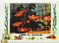 Jewel Tetras, Umm al Qiwain, Umm al Quwain, UAE, stamp, fish, Air Mail, 1 Riyal, Hyphessobrycon eques