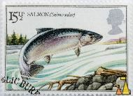 Jumping Salmon, UK, stamp, Queen Elizabeth II, fish, 15½ p, Salmo salar