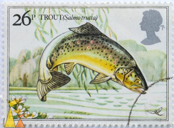 Jumping Trout, UK, stamp, fish, fly, 26 p, Salmo trutta, Queen Elizabeth II