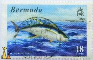 Jumping Yellowfin Tuna, Bermuda, stamp, coat of arms, EIIR, 18 Cents, Thunnus albacares, Ocean