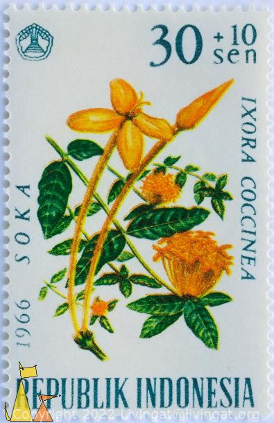 Jungle Geranium, Republik Indonesia, Indonesia, stamp, plant, flower, 30+10 Sen, 1966, Soka, Ixora coccinea