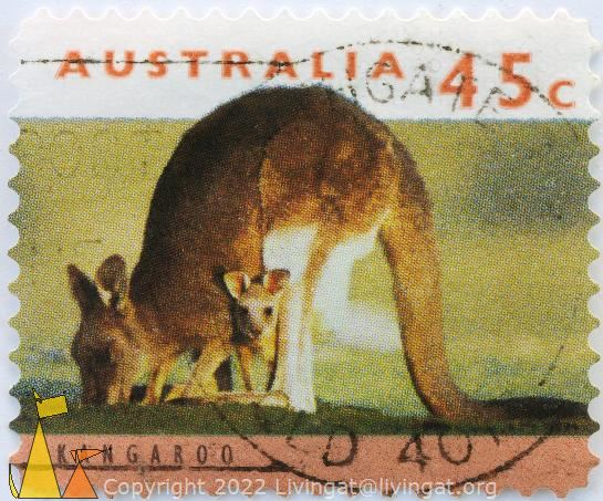 Kangaroo With Young, Australia, stamp, mammal, joey, Macropus spp, 1994