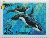 Killer Whales, CCCP, Russia, stamp, blue, mammal, water, 1990, noyta, 25 K, Kocamaka, Orcinus orca