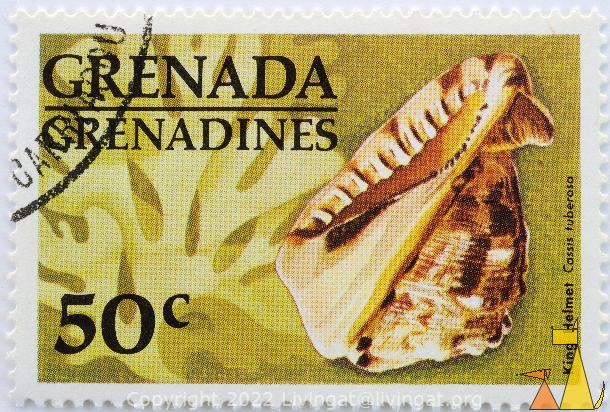 King Helmet, Trenada Grenadines, Grenada, stamp, shell, 50 c, yellow, Cassis tuberosa