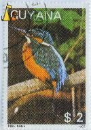 Kingfisher Photo, Guyana, stamp, bird, Kingfisher, 1987, $2, Alcedo atthis