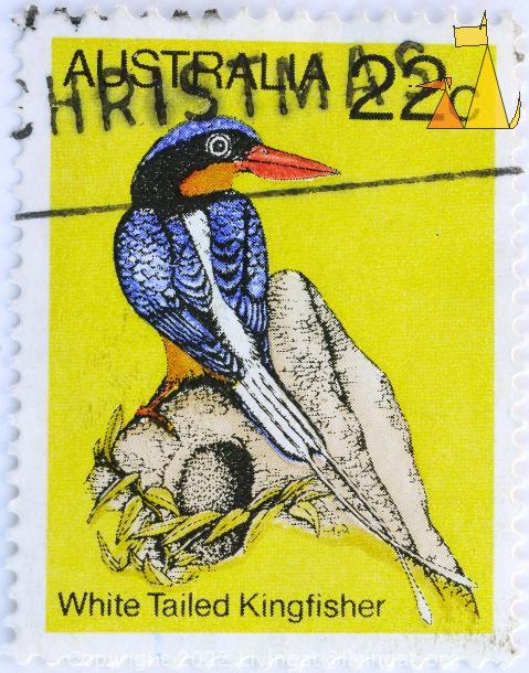 Kingfisher on yellow, Australia, stamp, bird, 22 c, White Tailed Kingfisher, Tanysiptera sylvia