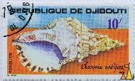 Knobby triton, Republique de Djibouti, Djibouti, stamp, shell, 10 f, postes, 1978, Edila, Sainson, orange, Charonia nodifera