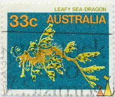 Leafy sea-dragon, Australia, stamp, fish, Phycodurus eques, 33 c