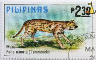 Leopard Cat, Philipinas, Philippines, stamp, mammal, Maral, Felis minuta, Tamminick, 2.30 P, Prionailurus bengalensis chinensis, cat