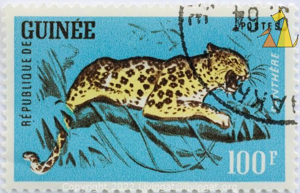 Leopard in a Tree, Republique de Guinee, Guinea, stamp, Panthera pardus, mammal, 100 F, Panthere, Postes