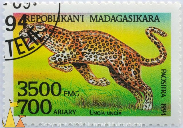 Leopard on Bright Background, Repoblikani Madagasikara, Madagascar, stamp, Paositra, 1994, 3500 FMG, 700 Ariary, Uncia uncia