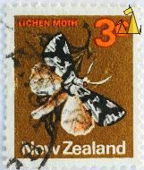 Lichen Moth, New Zealand, stamp, insect, butterfly, moth, 3 c, Declana atronivea