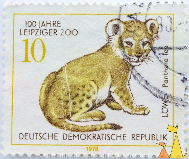 Lion Cub, Deutshe Demokratische Republik, Germany, stamp, mammal, cat, 1978, Löwe, Panthera leo, 10, 100 Jahre Lepziger Zoo