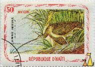 Long-Billed Curlew, Republique D'Haiti, Haiti, stamp, bird, 50 Centimes, Numenius americanus, Avion