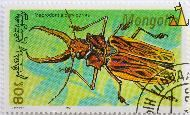 Long-horned beetle, Mongolia, stamp, insect, 1991, 80, bug, L Bumandorj, Macrodontia cervicornis