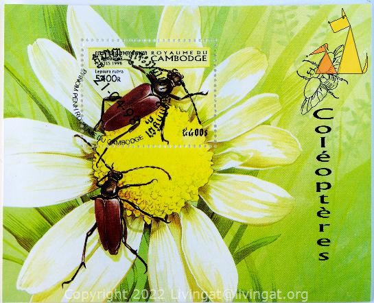 Longhorn beetle, Royaume du Cambodge, Cambodia, stamp, insect, beetle, Leptura rubra, Aredolpona rubra rubra, Coléoptèrs, postes, 1998, Phnom Penh, 5400 R