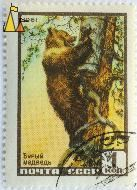 Looting Brown Bear, CCCP, Russia, stamp, mammal, bear, 1961, 1 Kon, Бурый медведь, Ursus arctos