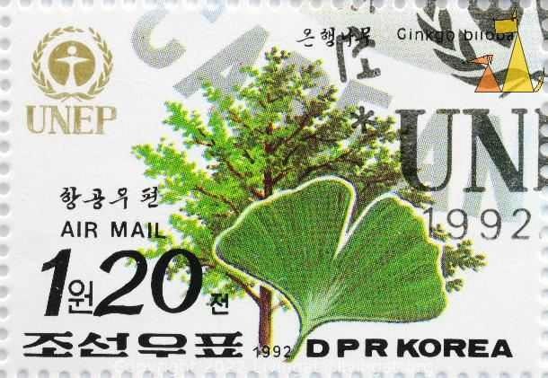 Maidenhair Tree, DPR Korea, North Korea, stamp, UNEP, 1992, 1.20, Air Mail, tree, Ginkgo biloba