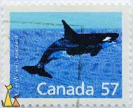 Male Killer Whale, Canada, stamp, fish, mammal, whale, 57, Orcinus orca