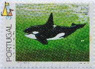 Male Killer Whale, Portugal, stamp, mammal, fish, whale, linne, 1758, 37.50, Brasiliana 83, INCM Imp, 1983, Vitor Lages des, Orcinus orca