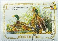 Mallards, Republique D'Haiti, Haiti, stamp, bird, 1 Gourde, Anas platyrhynchos, 1975, Avion