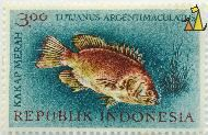 Mangrove red snapper, Republik Indonesia, Indonesia, stamp, fish, Lutjanus argentimaculatus, 3.00, Kakap merah