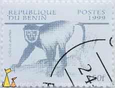 Mantled Guereza, Republique du Benin, Benin, stamp, mammal, 1999, Postes, 150 f, Colobus guereza